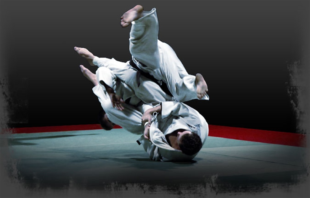 Shogun brazilian jiu jitsu voltagebd Image collections